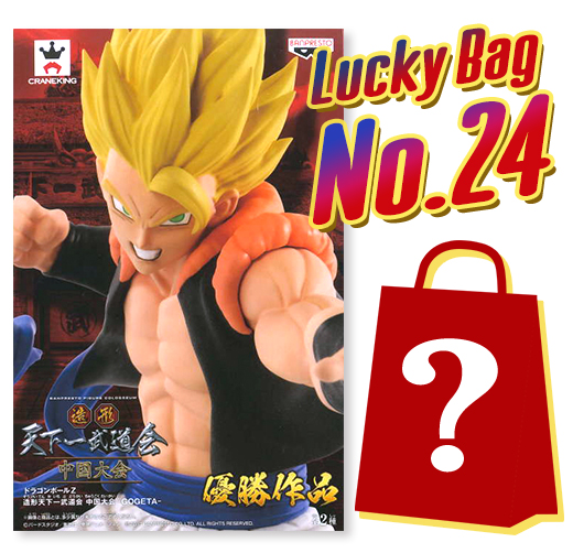 Lucky Bag No. 24